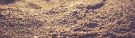 small grains of sand